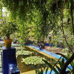 jardin_majorelle3